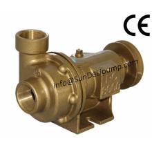 """(PC8000-2 """") Bombas de agua de mar crudo marino latón"""