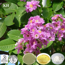 Anti-Diabetes Corosolic Acid 98% Banaba Leaf Extract