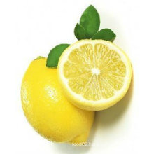 Greenfarm Fresh Yellow Lemon