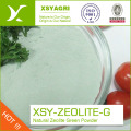 Waste Water Treatment 1-2mm Granular Natural Zeolite