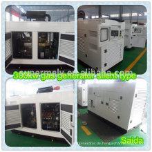 350kva Erdgasgenerator mit konkurrenzfähigem Preis