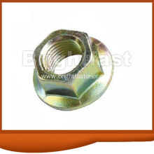 Good Quality for China Large Flange Nuts, Hexagon Flange Nuts, Special Flange Nut Manufacturers Hexagon Flange Nuts DIN6923 export to India Importers