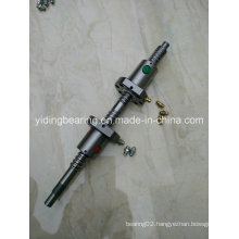 Rolled Thread Ball Screw 2505 2510 for CNC Machine