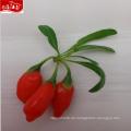 2017 ningxia großhandel frische goji Berry 350