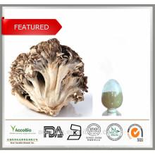 Polvo orgánico 100% natural del extracto de la seta de Maitake de la alta calidad