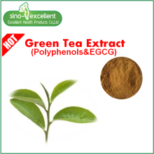 Natural green tea extract with polyphenol