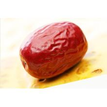 Brittle Big Red Jujube