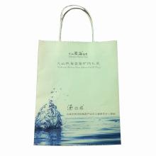 Цвет напечатанная бумага подарок Сумка для покупок (SW405)