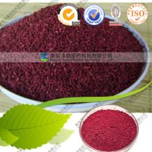 Monascus Purpureus a été extrait de plante rouge