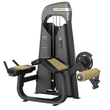 Máquina de Biceps Curl de la fábrica del equipo de la aptitud de XC818 Xinrui