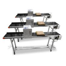 CE approved egg inkjet coding machine/expiry date egg printing machine/batch code printer with belt conveyor