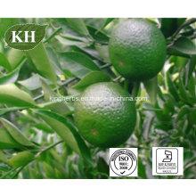 Natural Sweetener Citrus Aurantium Extract Neohesperidin Dihydrochalcone 96%