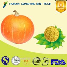 Suministre polvo de calabaza de alta calidad en polvo / polvo de proteína de calabaza