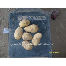 Última patata hollan