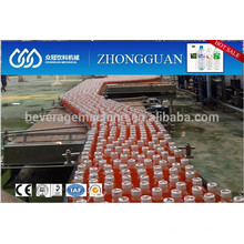 motor driven bottle conveyor