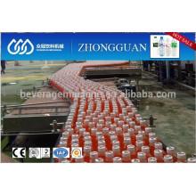 motor driven bottle conveyor