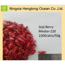 New Crop Ningxia Certified Goji Berries Bulk Precio al por mayor