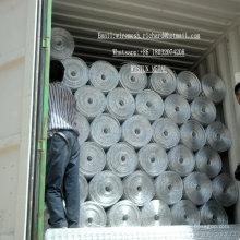 Treillis métallique soudé galvanisé à chaud et à chaud fabriqué en Chine