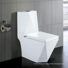 Laver vers le bas une toilette en céramique de Wc d'une seule pièce