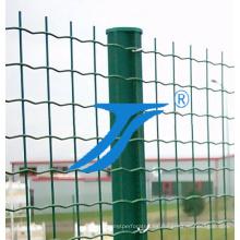 Recubierto de PVC soldadas de malla de alambre, malla soldada verde recubierto de PVC
