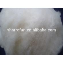 Laine de mouton chinoise pour le domaine de textile, laine blanche naturelle de mouton de chinois pour le fil à tricoter et le fil tissé