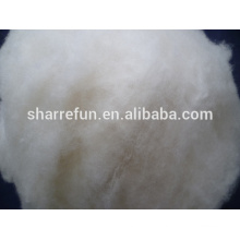 Factory directly hand carpet Carpet Wool