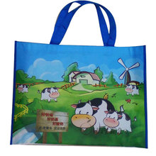 Nonwoven Bag for Advertising Tote (XHWM003)