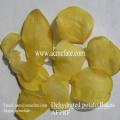 Nuevas copas de patata deshidratada de alta calidad
