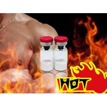 Pharmazeutisches Rohmaterial Steroid 17-Alpha-Methyl-Testosteron CAS: 58-18-