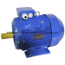 Y2 Series 3-Phase Asynchronous Electric Motors for Industry with Ce