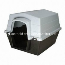 Plastic Pet Box Container Injection Mold