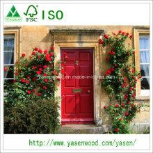 Piel de la puerta del edificio casero de las puertas de chapa de madera imprimadas