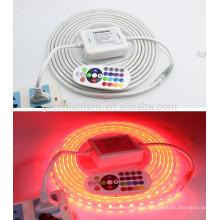 LED Strip Light waterproof 220V 5050 SMD 60 leds/m Warm White/White/Red/Green/Blue