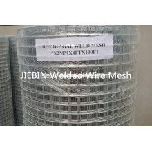 Hot Dipped Galvaniserad Svetsad Wire Mesh