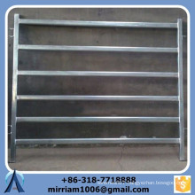 Factory direct 6 bars 50 nb pipe economy cattle panels with high quality