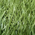 Long Service Life Durable Green Synthetic Cricket Turf