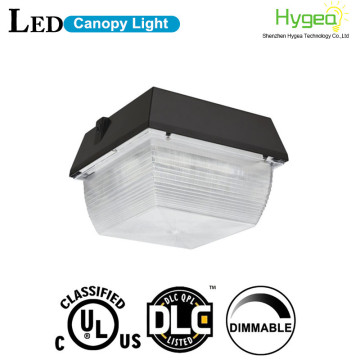 High Performance DLC 40W LED Canopy Light