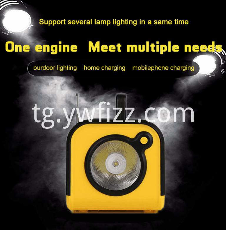 Portable Mobile Lighting System