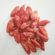 Ningxia convencional Lycium Barbarum Goji Berry Dried