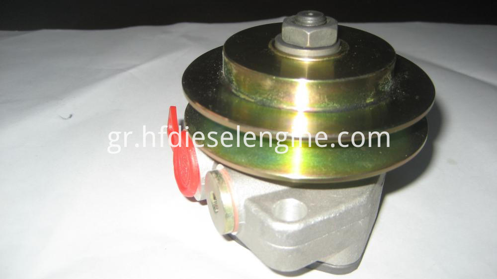 1013 diesel fuel injection pump (1)