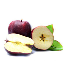 Tianshui Huaniu Fuji Fresh apple red huaniu apple supplier in gansu