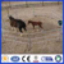 DM Hot Dipped Galvanisiertes Pferd Zaun Panel / Corral Panel von professionellen Hersteller
