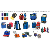 Cooler Bag (CT1232)