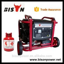 BISON (CHINA) Alibaba China 6kw 6 kva 1/3 fase eléctrica Generador de LPG
