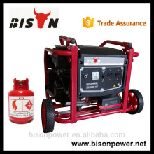 BISON(CHINA) Alibaba China 6kw 6 kva 1/3 phase electric LPG Generator