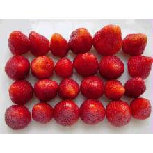 suministro de fruta congelada nuevo cultivo IQF fresas congeladas