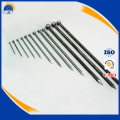 hot sale common wire nails iron nail galvanized round nail