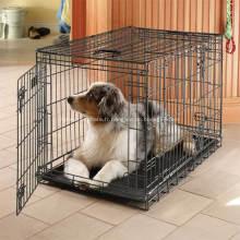 Caisse pour chien en métal