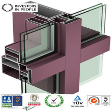 Aluminum/Aluminum Extrusion Profile of House