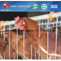 Factory Outlet Super Strong and Durable Chicken Cage